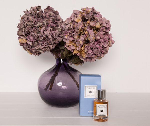 violetta-con-pianta